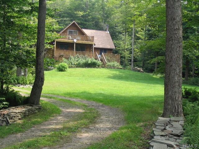 396 Amber Lake Road, Livingston Manor, NY 12776 (MLS #4909704) :: William Raveis Legends Realty Group