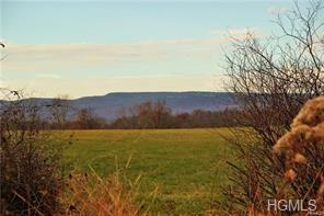 184 River Road, Wallkill, NY 12589 (MLS #4911317) :: William Raveis Legends Realty Group