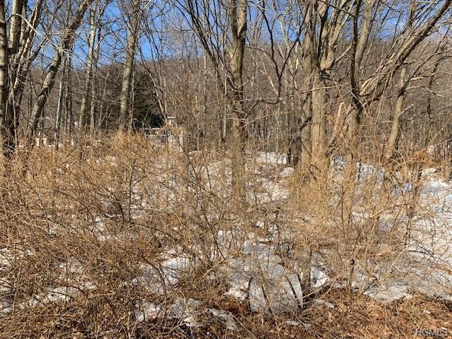 315 Call Hollow Road, Stony Point, NY 10980 (MLS #4914768) :: Mark Seiden Real Estate Team