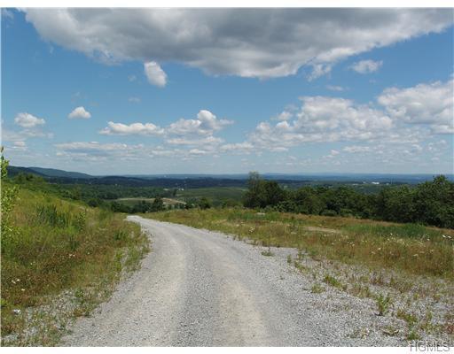 1-17 Truncali Road, Marlboro, NY 12542 (MLS #4918892) :: Mark Seiden Real Estate Team