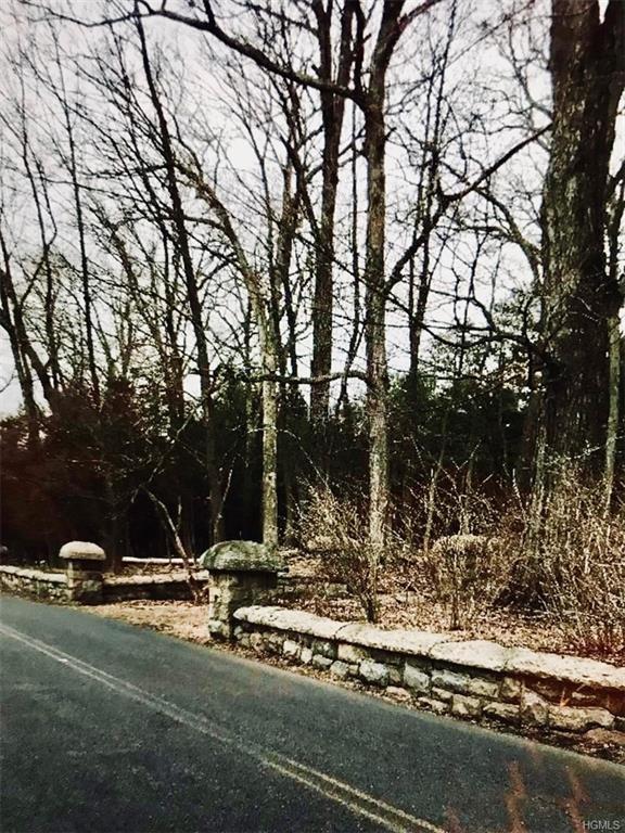 288 Tuxedo Road, Tuxedo Park, NY 10987 (MLS #4920529) :: William Raveis Legends Realty Group