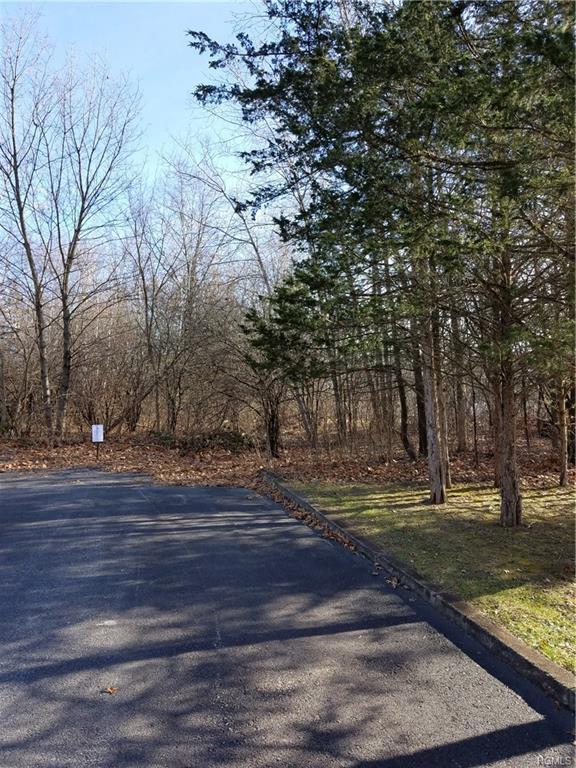 2 Beechwood Circle, Newburgh, NY 12550 (MLS #4923137) :: William Raveis Baer & McIntosh