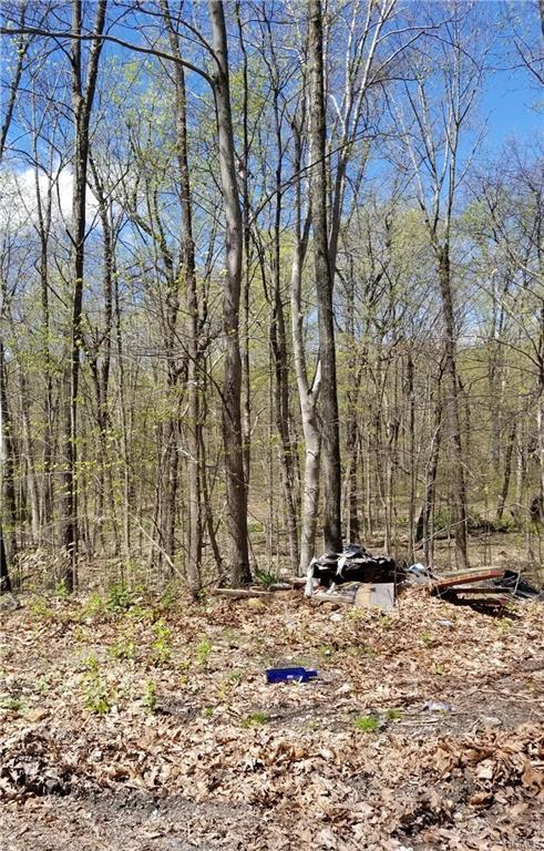 County Route 49, Middletown, NY 10940 (MLS #4924390) :: Mark Boyland Real Estate Team