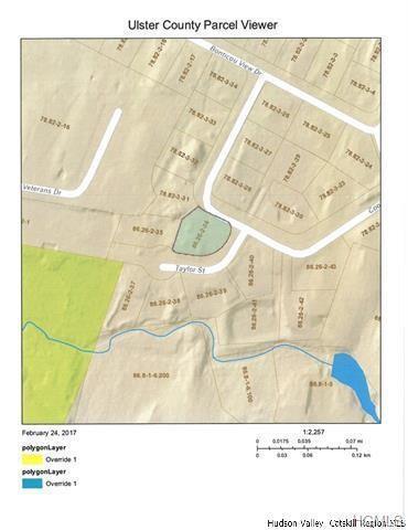 2 Taylor Street, New Paltz, NY 12561 (MLS #4939109) :: Mark Boyland Real Estate Team