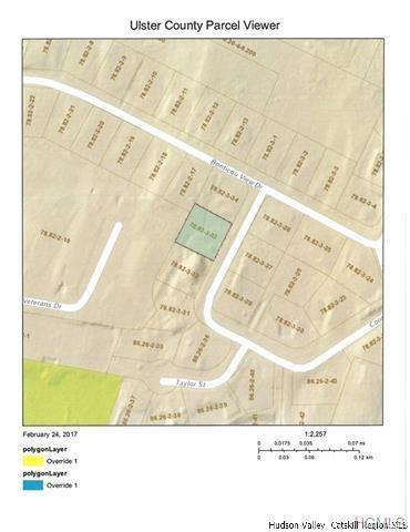 6 Cooper Street, New Paltz, NY 12561 (MLS #4939116) :: Mark Boyland Real Estate Team