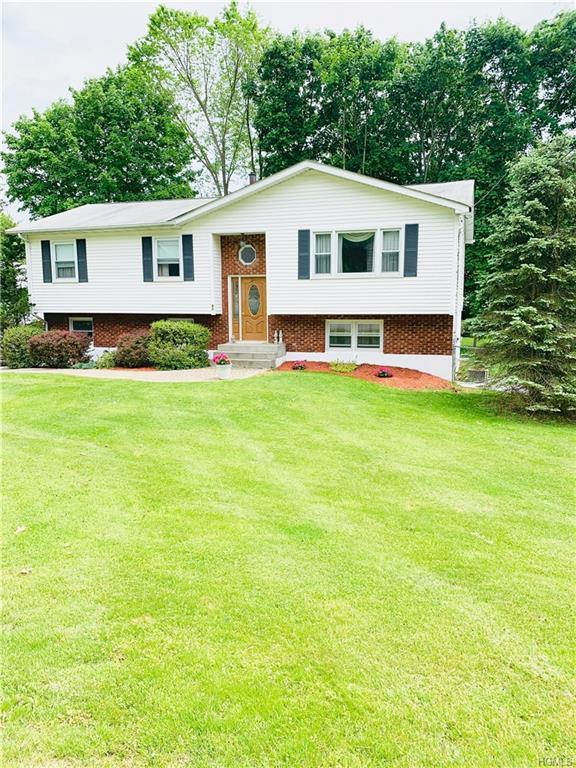 64 N Mission Road, Wappingers Falls, NY 12590 (MLS #4940778) :: William Raveis Legends Realty Group