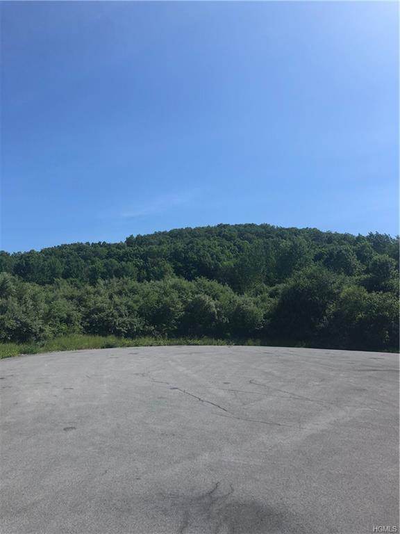 County Hwy 13, Chester, NY 10918 (MLS #4963762) :: William Raveis Legends Realty Group