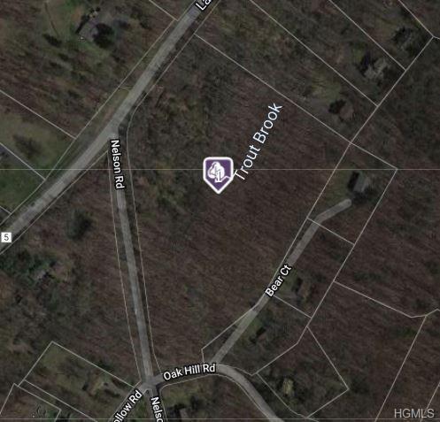 Nelson Road, Greenwood Lake, NY 10925 (MLS #4965588) :: William Raveis Baer & McIntosh