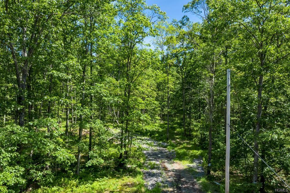 Trillium Trail - Photo 1