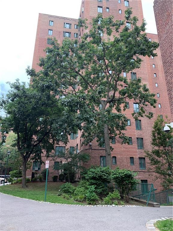 1507 Metropolitan Avenue 3G, Bronx, NY 10462 (MLS #4977970) :: Mark Boyland Real Estate Team