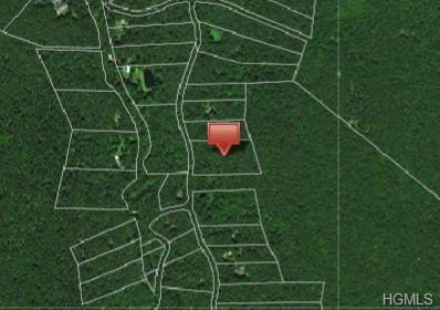 Lot 34 Upper Lumber Road, Glen Spey, NY 12737 (MLS #4982044) :: William Raveis Legends Realty Group