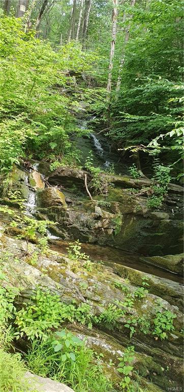 7 N Oakwood Trail, Monroe, NY 10950 (MLS #4986002) :: The McGovern Caplicki Team