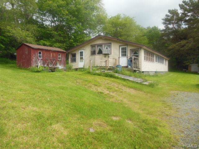 14 Old Lilly Pond Road, Parksville, NY 12768 (MLS #4990839) :: Shares of New York