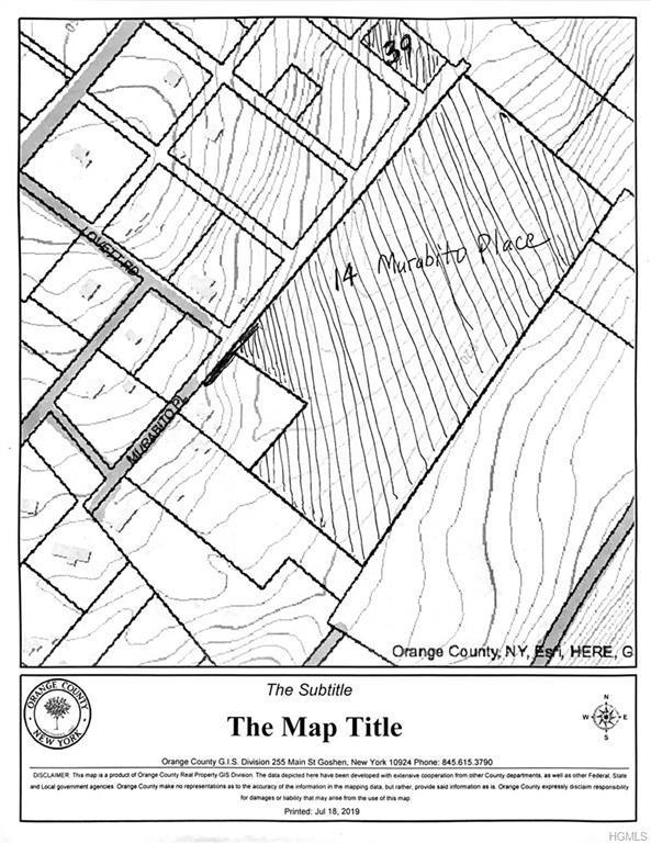 14 & 39 Murabito Place, Goshen, NY 10924 (MLS #4999520) :: William Raveis Legends Realty Group