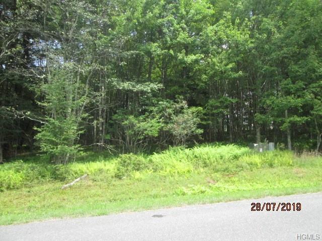 Farmstead Drive, Neversink, NY 12765 (MLS #5009722) :: Mark Boyland Real Estate Team