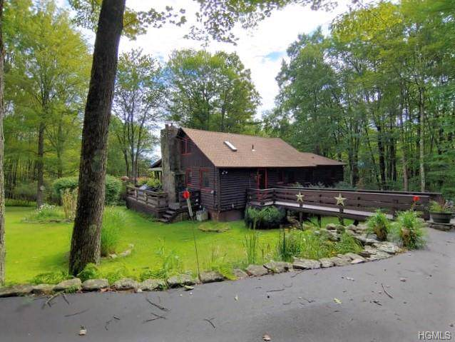 57 Island Road, Grahamsville, NY 12740 (MLS #5036048) :: Mark Boyland Real Estate Team