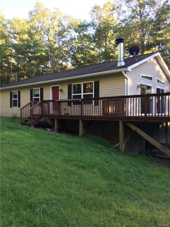 19 Ozeriany Road, Barryville, NY 12719 (MLS #5071143) :: Shares of New York