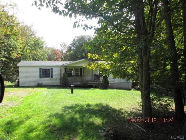 166 E Hill Road, Jeffersonville, NY 12748 (MLS #5076853) :: Marciano Team at Keller Williams NY Realty