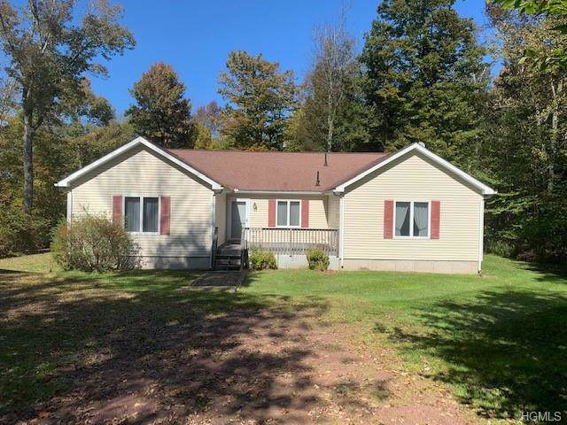 759 Stump Pond Road, Livingston Manor, NY 12758 (MLS #5080261) :: William Raveis Baer & McIntosh