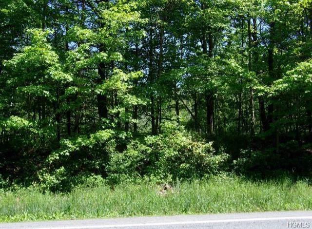 808 Us Route 209 - Photo 1