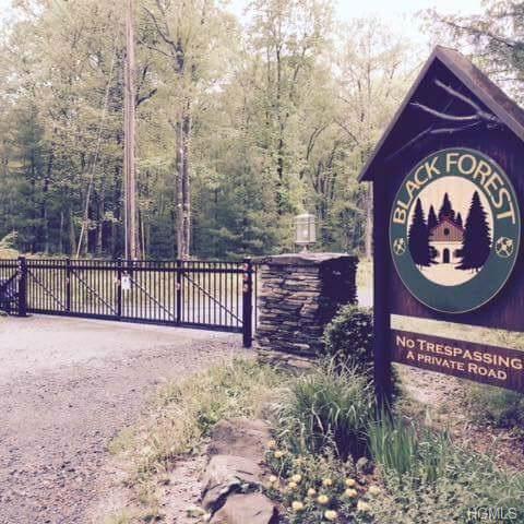 Upper Lumber Road, Glen Spey, NY 12737 (MLS #5081721) :: Shares of New York