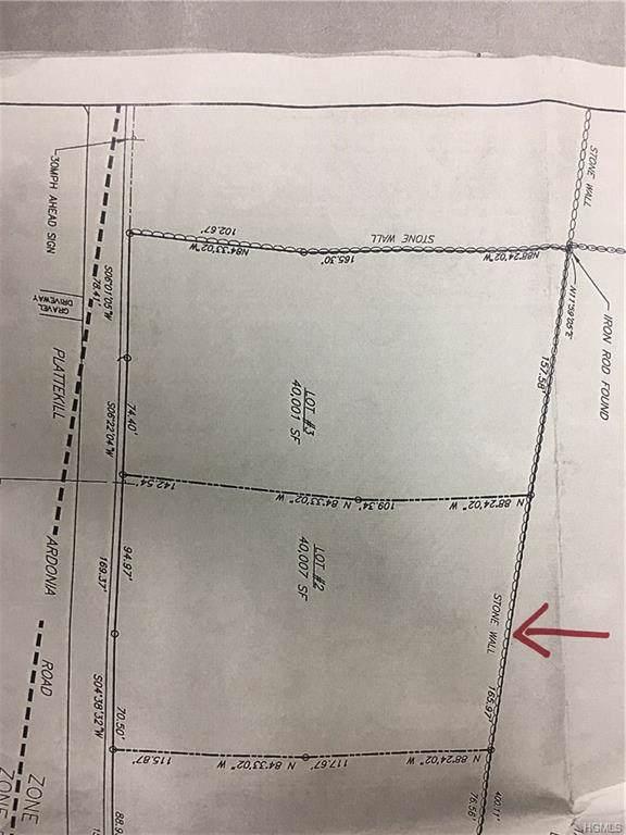 1025 Plattekill Ardonia Road, Clintondale, NY 12515 (MLS #5089127) :: William Raveis Baer & McIntosh