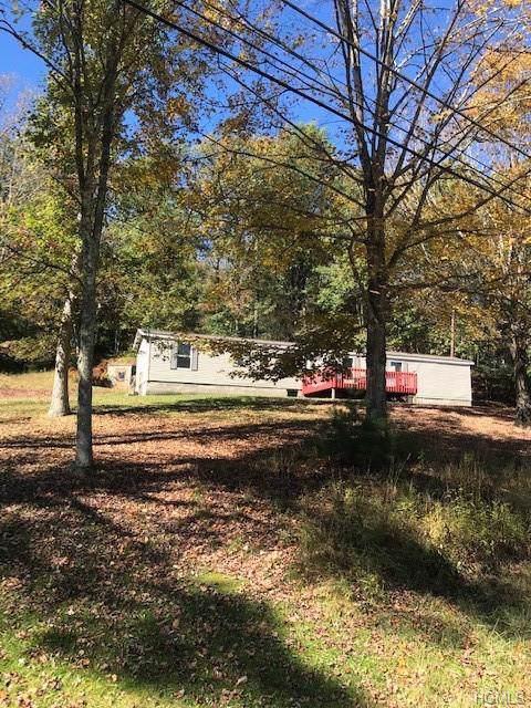 215 Beaver Brook Road, Narrowsburg, NY 12764 (MLS #5094054) :: Mark Seiden Real Estate Team