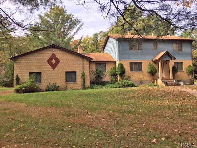 48 Pine Ayre Drive, Eldred, NY 12732 (MLS #5106809) :: The Anthony G Team