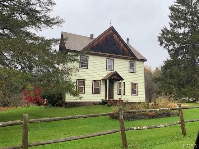 36 Schoolhouse Road, Livingston Manor, NY 12758 (MLS #5115006) :: The McGovern Caplicki Team