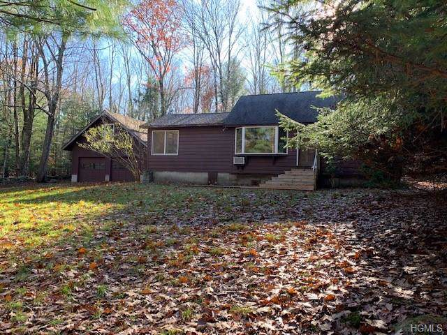 29 Molls Brook Road, Neversink, NY 12765 (MLS #5117426) :: William Raveis Legends Realty Group