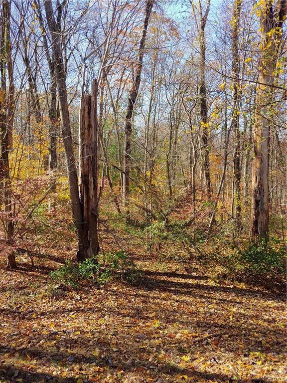 Acqueduct Trail, Lake Peekskill, NY 10537 (MLS #5117975) :: The Anthony G Team