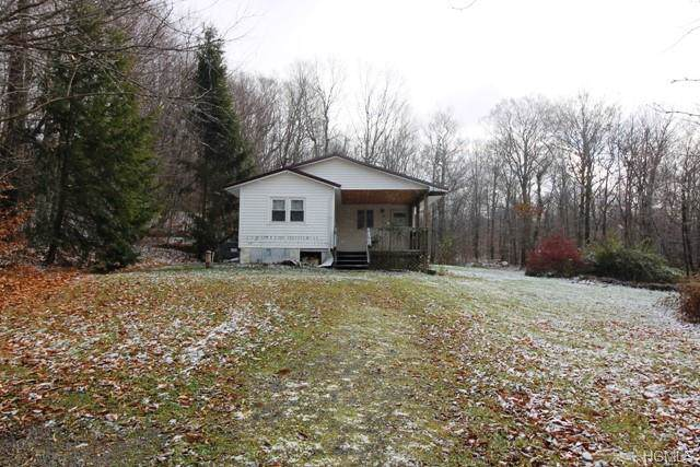 785 Dahlia Road, Livingston Manor, NY 12758 (MLS #5118877) :: Mark Boyland Real Estate Team