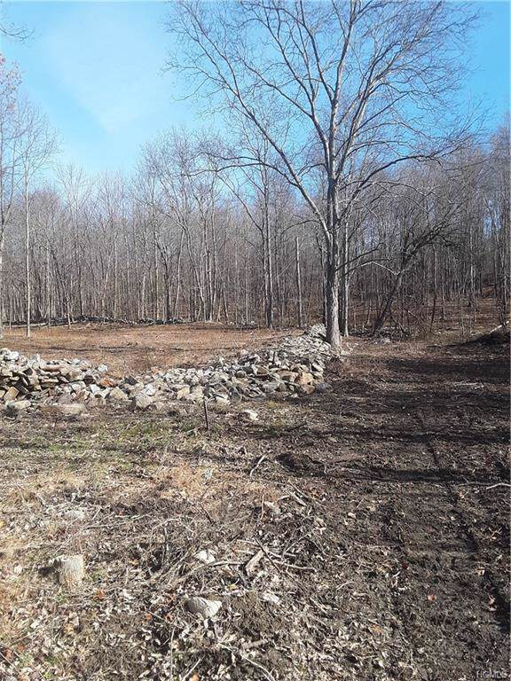 Lot 9 Midland Lake Road, Middletown, NY 10941 (MLS #5119550) :: The McGovern Caplicki Team