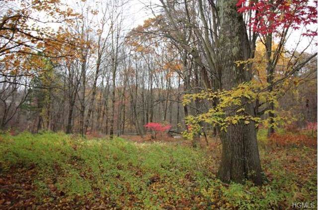 Bog Hollow Road, Wassaic, NY 12592 (MLS #5119914) :: William Raveis Legends Realty Group