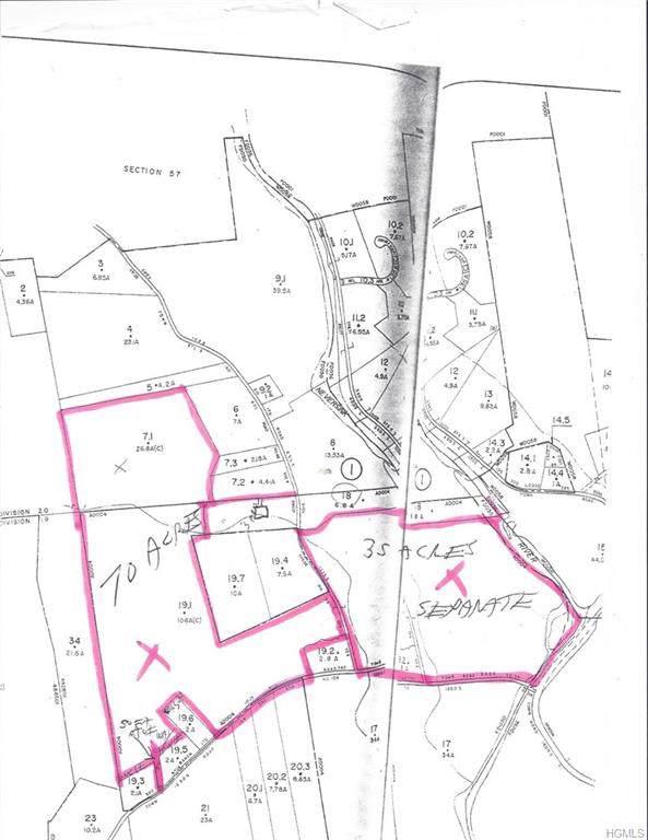 368 Grey Road, South Fallsburg, NY 12779 (MLS #5121507) :: Shares of New York