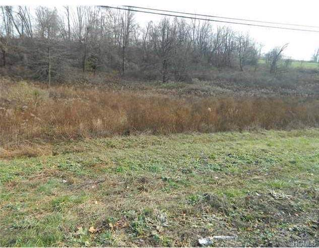 State Route 208, Montgomery, NY 12549 (MLS #5121814) :: The McGovern Caplicki Team