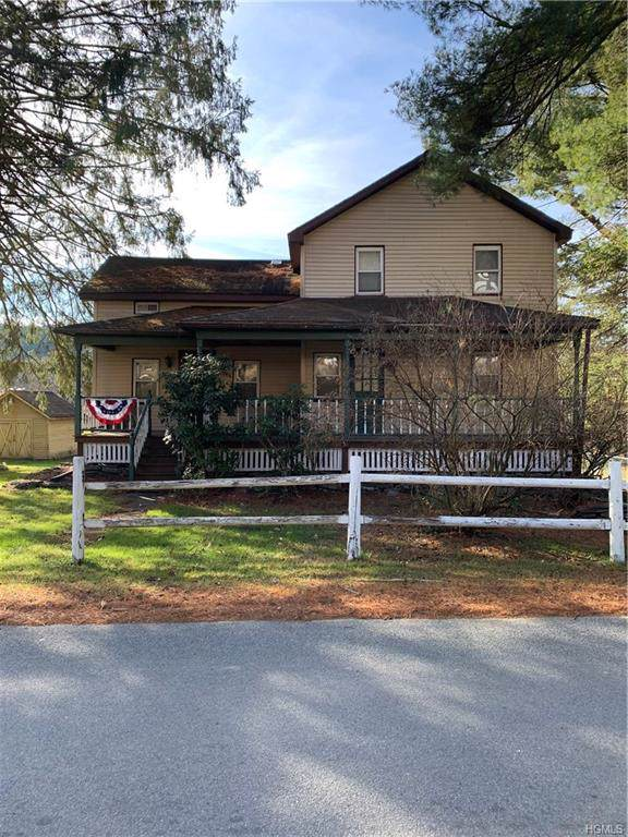 66 Cochecton Road, Cochecton, NY 12726 (MLS #5122175) :: William Raveis Baer & McIntosh
