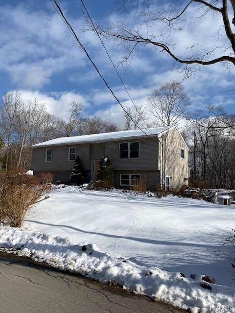 184 Ressique Road, Stormville, NY 12582 (MLS #5125062) :: William Raveis Baer & McIntosh