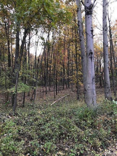 Ebenezer Lot 80 Lane, Pound Ridge, NY 10576 (MLS #5125119) :: Mark Boyland Real Estate Team