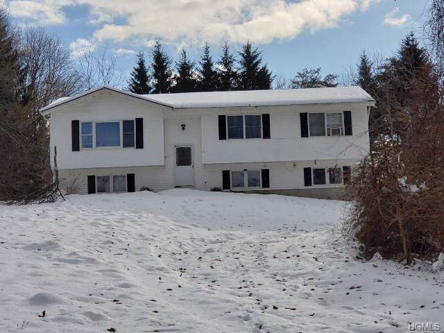 207 State Route 94 S, Warwick, NY 10990 (MLS #5125442) :: William Raveis Baer & McIntosh