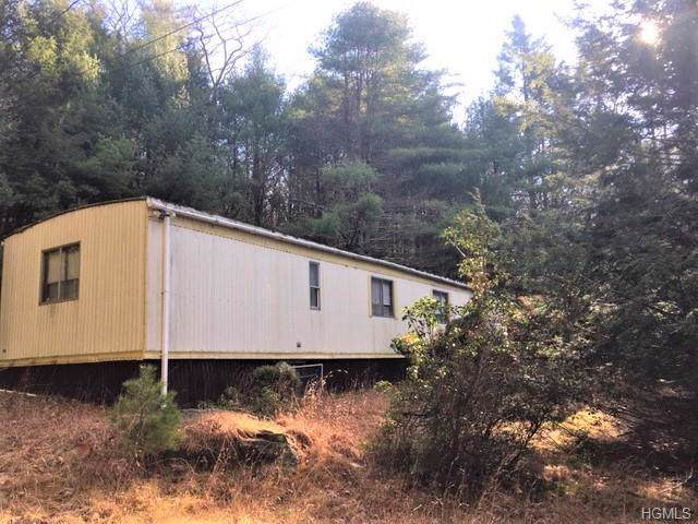 340 State Route 55, Barryville, NY 12719 (MLS #5125444) :: The McGovern Caplicki Team