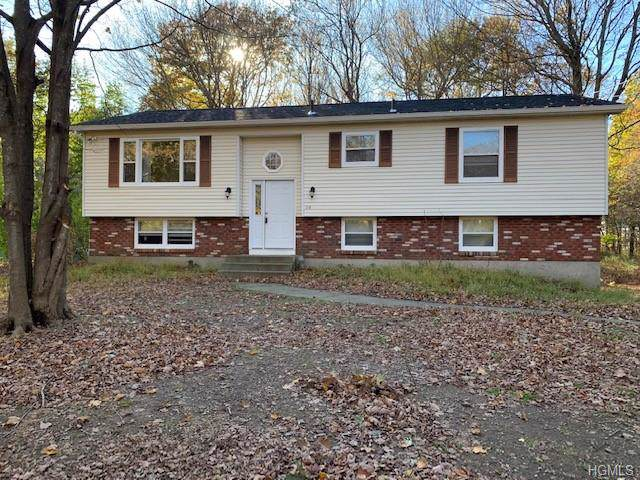 210 White Pond Road, Stormville, NY 12582 (MLS #5130098) :: William Raveis Legends Realty Group