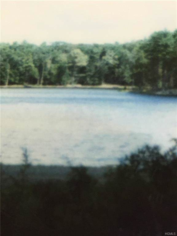 Lot 56 Timber Lake Drive, Highland, NY 12528 (MLS #6002211) :: William Raveis Legends Realty Group