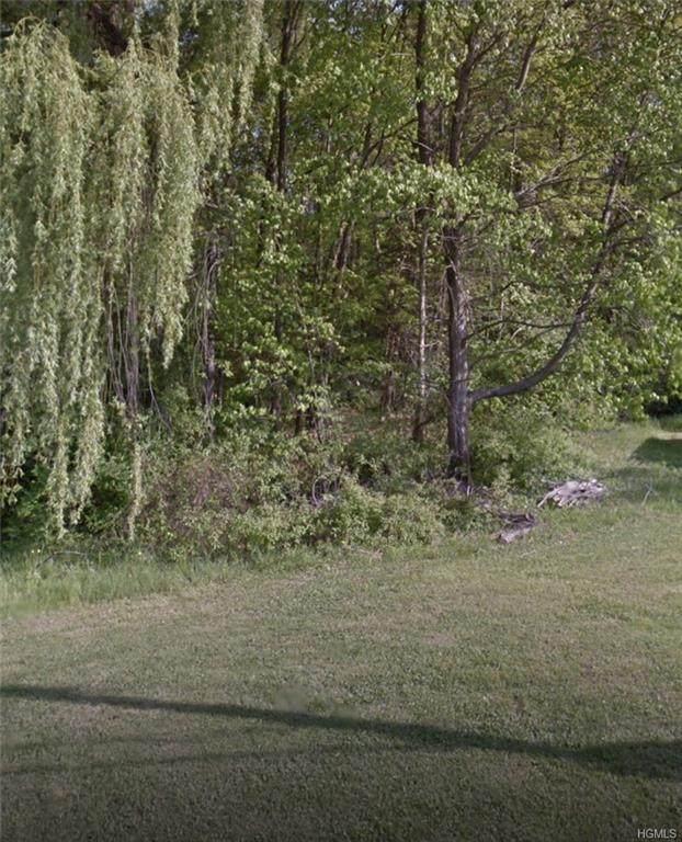 12 Park Boulevard, Hyde Park, NY 12538 (MLS #H6002448) :: William Raveis Baer & McIntosh