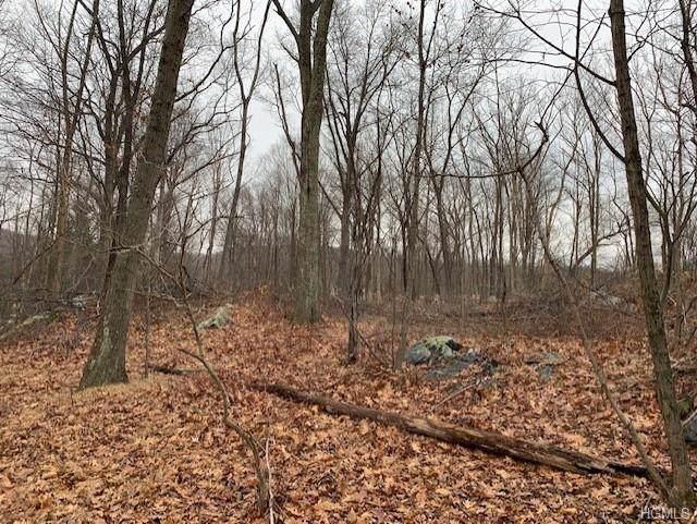 490 Long Pond Road, Mahopac, NY 10541 (MLS #6004988) :: The McGovern Caplicki Team