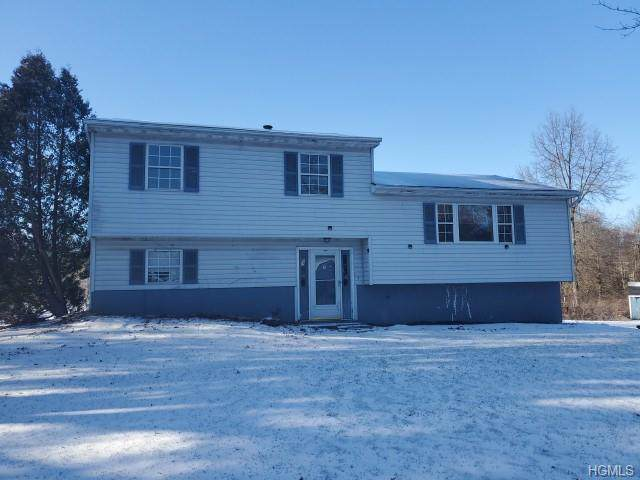 8 Appletree Drive, Gardiner, NY 12525 (MLS #6005315) :: William Raveis Legends Realty Group