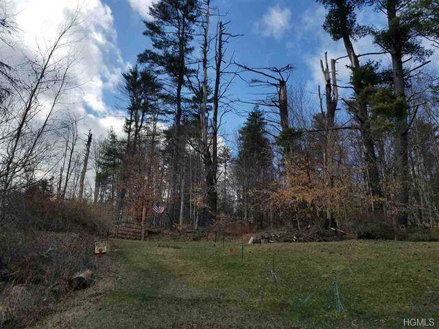 1192 County Road 115, Cochecton, NY 12726 (MLS #6005467) :: William Raveis Baer & McIntosh