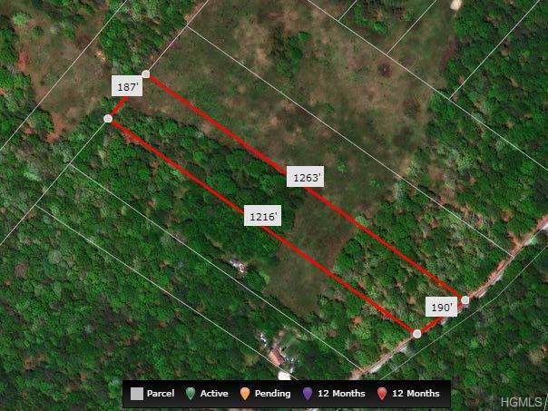 Lot # 10 Trail, Narrowsburg, NY 12764 (MLS #6006916) :: Mark Boyland Real Estate Team