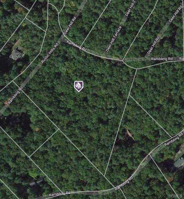 Rambling Road, Mamakating, NY 12790 (MLS #H6006981) :: Mark Boyland Real Estate Team
