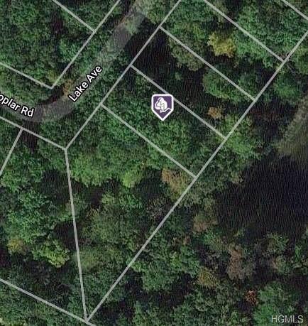 Lake Avenue, Mount Hope, NY 10963 (MLS #H6008882) :: The McGovern Caplicki Team